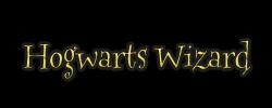 Hogwarts Wizard