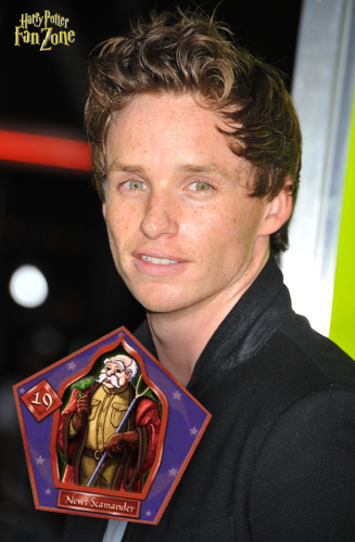 Eddie Redmayne is Newt Scamander in the 'Fantastic Beasts' prequels